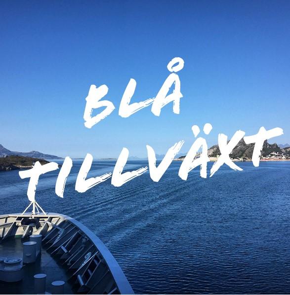 bla_tillvaxt_puff (2)